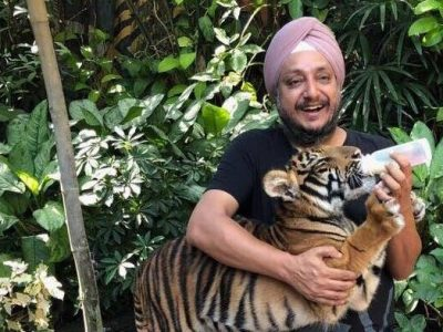 A Sydney businessman feeding a bottle of milk to a baby tiger