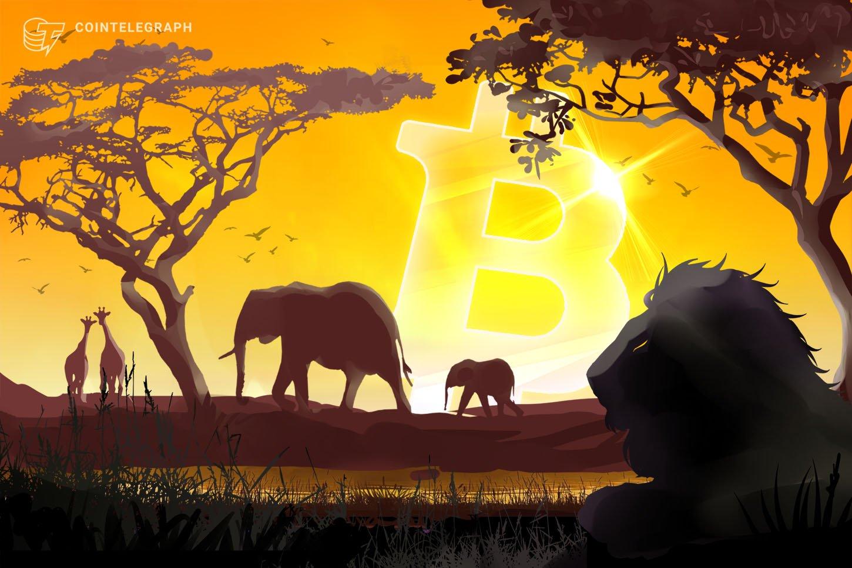 Tinjauan Dokumenter - Perbankan di Afrika: Revolusi Bitcoin